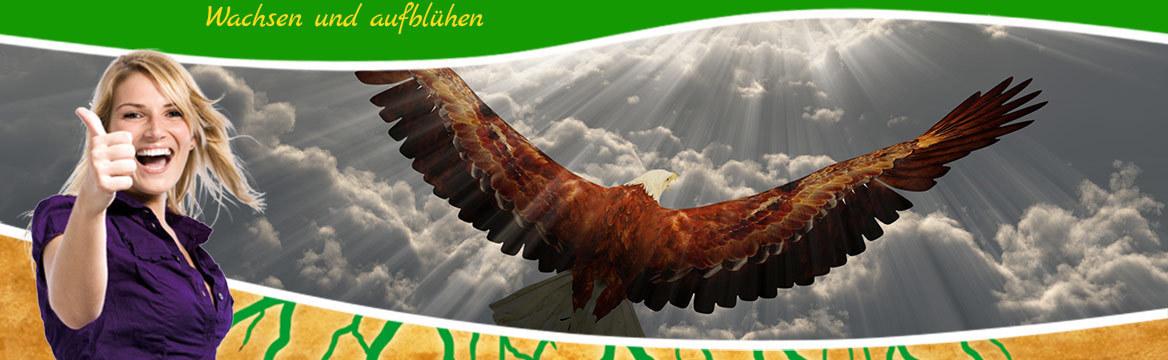 Adler im Himmel: © rolffimages - Fotolia