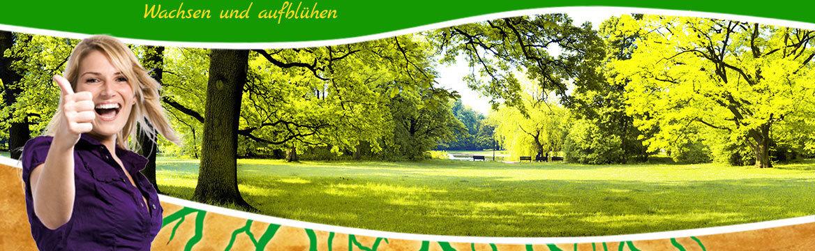 Park mit Bäumen und Parkbänken am See: © satori - Fotolia